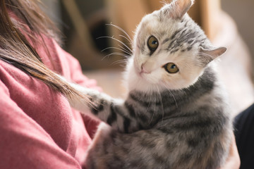 woman play with her kitten