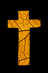 Orange foliage draw crucifix isolated on black background