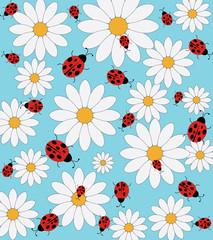 Ladybird and daisy pattern