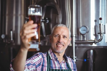 Smiling brewer examining beer glass at brewery