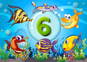 Flashcard number six with 6 fish underwater