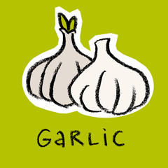 Garlic on green background