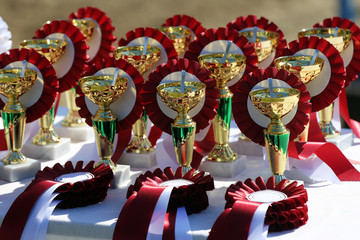 Golden trophy cups and ribbons for riders