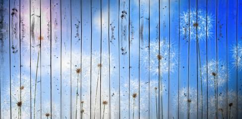 Composite image of digitally generated dandelions