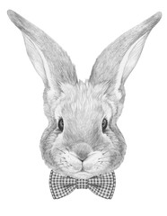 Portrait of Rabbit with bow tie. Hand drawn illustration.