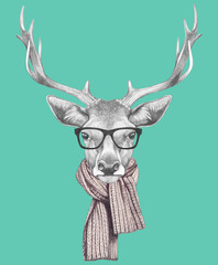 Portrait of Deer with glasses and scarf. Hand drawn illustration.