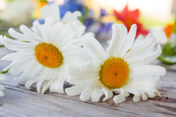 Two flowers of camomile on old wooden table with background of a summer garden