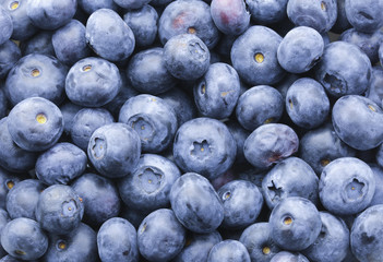 Delicious super-food Blueberries