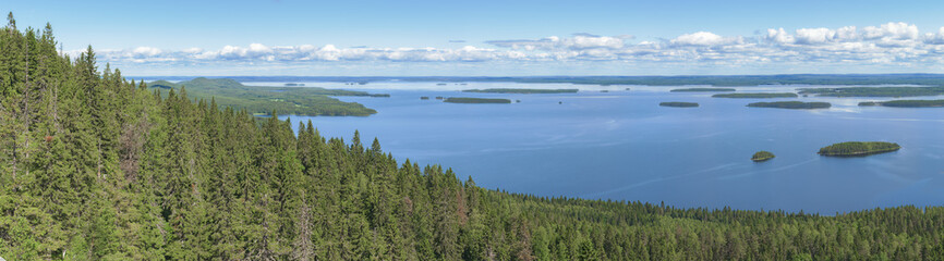 Wall Mural - Panoramic view from the top of the Koli national park to lake Pielinen