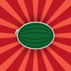 Watermelon sticker on a bright background