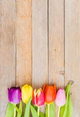 Bunte Tulpen auf Holz Hintergrund
