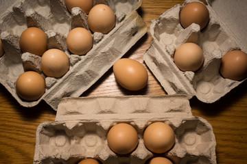 Eggs poultry concept.