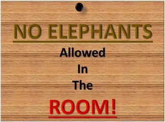 No Elephants...