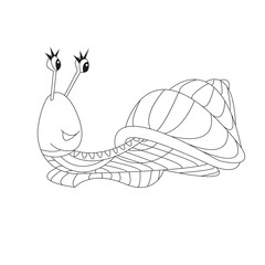 Hand drawn outline snail