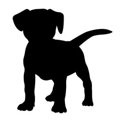 fox terrier puppy dog silhouette isolated