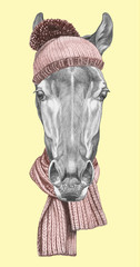 Portrait of Horse with hat and scarf. Hand drawn illustration.
