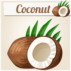 Coconut. Detailed Vector Icon
