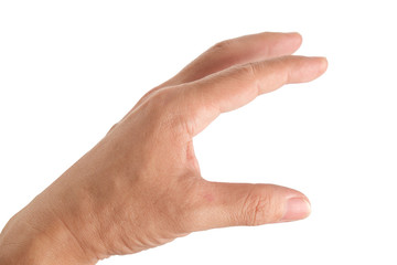 Human hand / Human hand on white background.