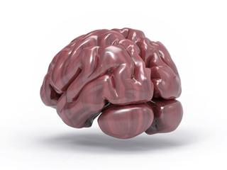 Isolated 3D Brain Illustration