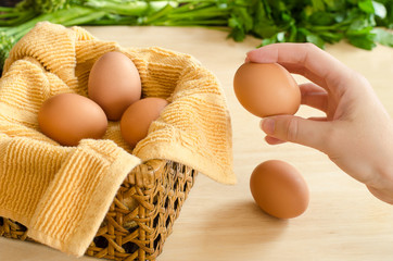 Hand Placing All Eggs In One Basket
