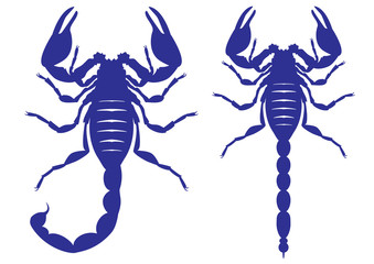 Vector silhouette of a scorpion