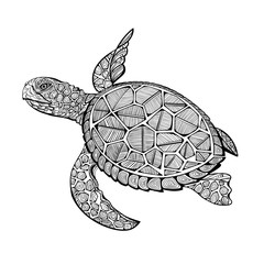 tatoo sea turtle
