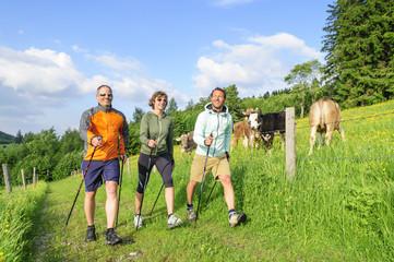 Fototapete - Spaß in der Gruppe beim Nordic Walking