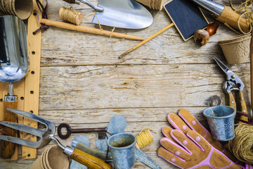 Garden tools on wooden background