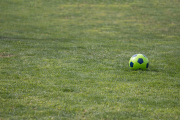 Isolated soccer ball on green grass