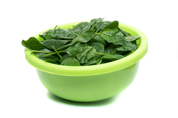 Close view of a bunch of fresh spinach on a green bowl, isolated on a white background.