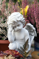 Cemetery / little Angel on a cemetery