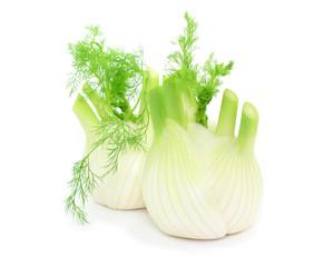 Gemüse Fenchel