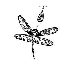 Dragonfly ink doodle.