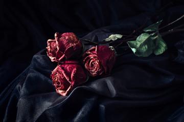 Three dry roses