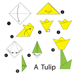 step by step instructions how to make origami tulip.