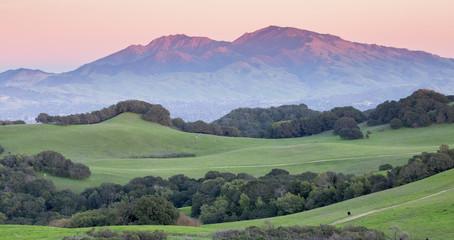 Foto auf Leinwand Olivgrun Sunset over Mount Diablo from Rolling Grassy Hills of Briones Regional Park. Taken from Mott Peak in Contra Costa County, California, USA.