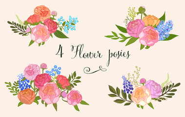 Bouquet of Peonies. Set. - Illustration.