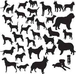 Dogs silhouette vector illustration. Eps 10