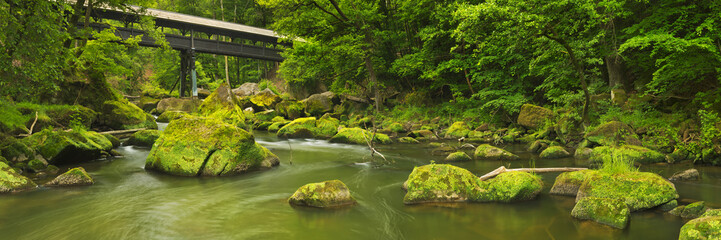 River with a covered bridge in a lush green forest