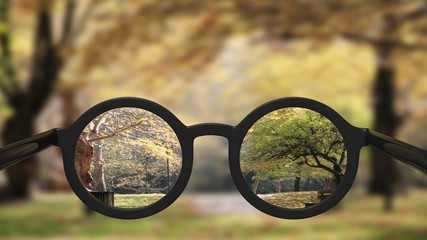 Closeup on eyeglasses with focused and blurred landscape view.