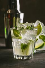 Delicious Mojito Cocktail