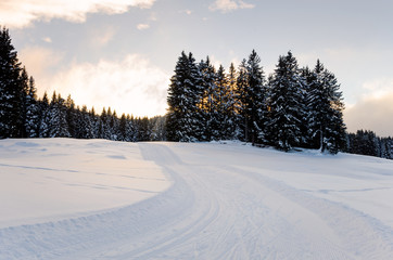 Winding Cross-country Skiing Track at Sunset