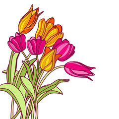 Bouquet of hand drawn pink and yellow tulip flowers, isolated on white background. Vector floral spring greeting card or banner background.