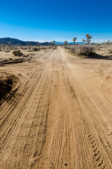 Fototapete - Desert Cross Roads Vertical