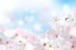 桜 花びら たくさん 青
