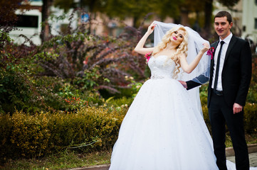 Amazing wedding couple under veil in love background autumn park