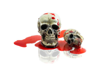 Still Life Human Skull with red blood on white. Skeleton and Sku