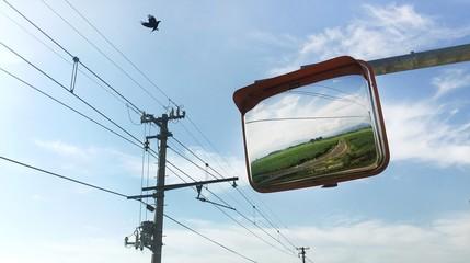 Landscape image in mirror