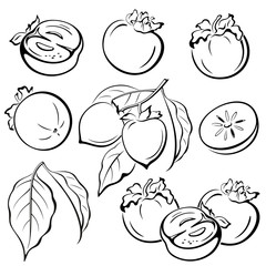 Set Persimmon Fruits and Leaves Black Pictograms Icons Isolated on White Background. Vector