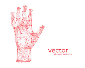 Vector illustration of human arm